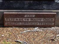 Duck - Elizabeth Mary