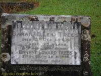 Trees - Sarah Ellen and Ernest Edward