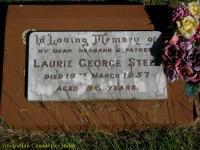 Steel - Laurie George