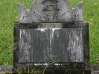 Swan - Charles Stephen, William Francis and Hannah Jane