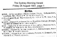 Sindel - Mrs. R - Birth of a son in 1881