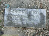 Roy - Robert