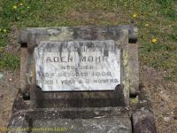 Mohr - Aden