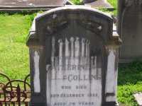 Collins - Catherine
