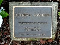 Dombkins - Aubrey S