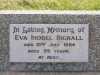 Bignall - Eva Isobel