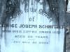 Schmitzer - George Joseph