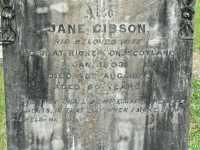 Gibson - Jane