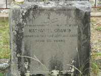 Godwin - Nathaniel