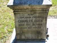 Duck - Charles