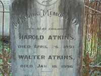 Atkins - Harold and Walter
