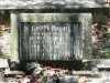 Whatson - Alfred Henry and Flora Wilhelmina Rhoda