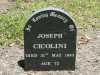 Cicolini - Joseph