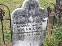 Dew - George Heathcote