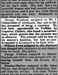 Woollard - George - Before Court.