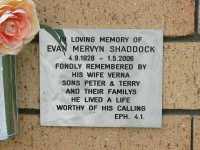 Shaddock - Evan Mervyn