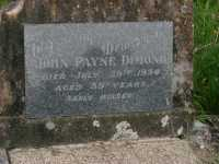 Dimond - John Payne