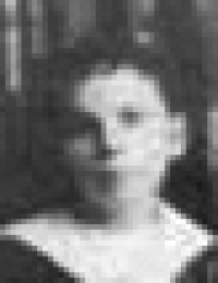 Sainty - Bertha Blanche